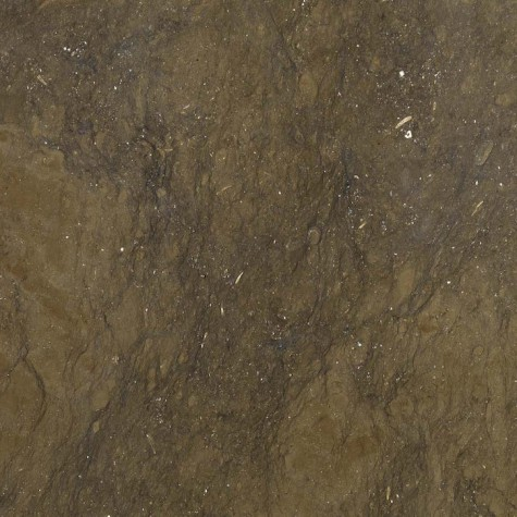 ebano-475x475