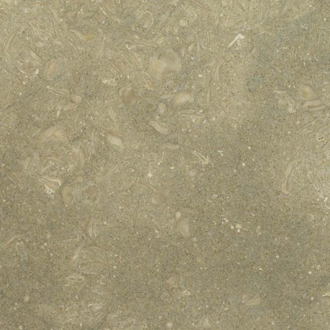 fossil-green-475x475