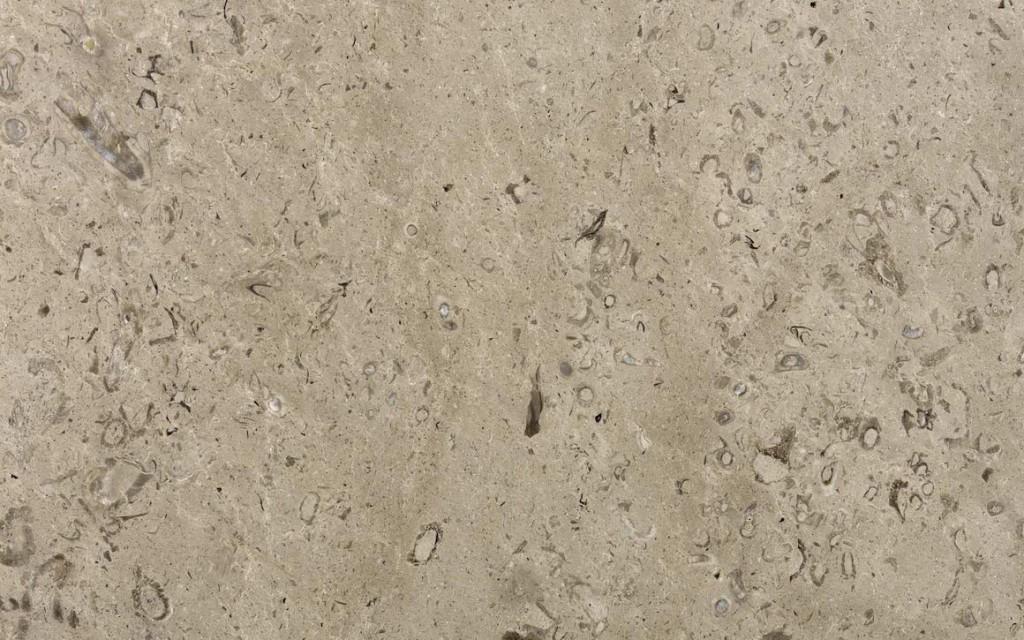 lipica-fiorito-1024x640